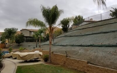 Hydroseeding Directions and Care